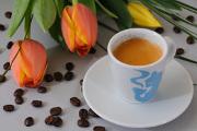 Kaffee und Blume 03-2012