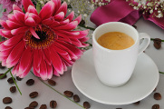 Coffe and flowers 04-2012