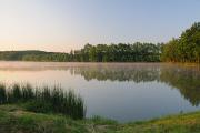 Pond Štilec 05-2012