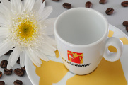 Hausbrandt´s espresso cups of coffee and flowers 06-2012