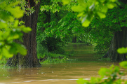 flooding river Malše 06-2013