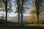 Nationalpark Böhmerwald 10-2013