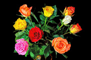bouquet of roses 06-2015