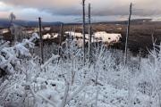 NP Šumava 12-2019 Umgebung Horská Kvilda