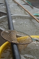 výlov rybníku Bezdrev 11-2007