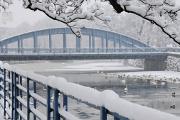 Ufer Zátkovo nábřeží II