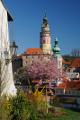 zámek Český Krumlov IV