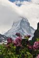 Zermatt s Matterhornem II