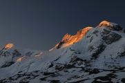 Breithorn v ranním světle