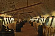 Salón vín ČR-vinný sklep