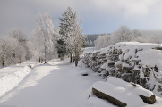 zimní krajina v Novohradských Horách