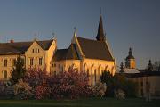 Senovážné náměstí - kostel sv. Rodiny IV