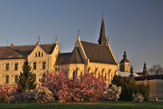 Senovážné náměstí - kostel sv. Rodiny I