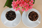 pražená kávová zrna a kolopějka