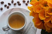 espresso a primula I
