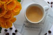 espresso a primula II
