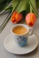 espresso a tulipán II