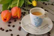espresso a tulipán IV