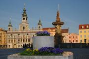 Přemysl Otakar II. Platz mit Rathaus