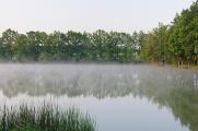 rybník Štilec I