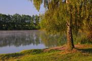 rybník Štilec V