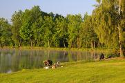 rybník Štilec a rybáři II