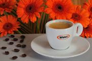 espresso Bristot a gerbery