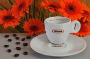šálek na espresso Bristot a gerbery
