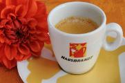šálek na espresso Hausbrandt a jiřiny I