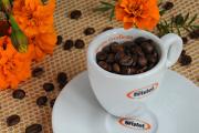 šálek na espresso Bristot s afrikány II
