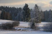 zimní krajina okolo Pohoří na Šumavě