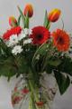 gerbery a tulipány I