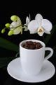 kávová zrnka a orchidej VI