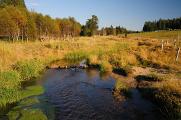 Horská Kvilda - Hamerský potok