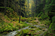 údolí Suché Kamenice
