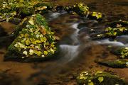 Vlčí potok
