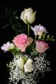 růže a frézie II
