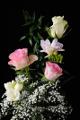 růže a frézie III