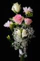 růže a frézie V