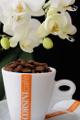 šálek na espresso Corsini a orchidej XIV
