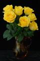 žluté růže ve skleněné váze II