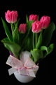 růžové tulipány v hrnkovém obalu I