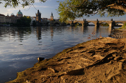 Vltava a Karlův most II