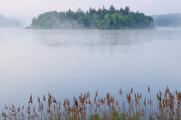 rybník Žár III