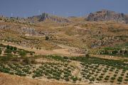 sicilská krajina v Monti Sicani