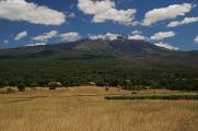 Etna - západní svah nad Adranem