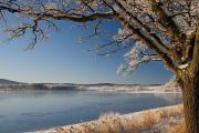 zimní krajina u rybníku Žár II