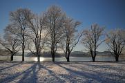zimní krajina u rybníku Žár III