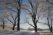 zimní krajina u rybníku Žár V