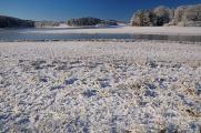 zimní krajina u rybníku Žár VI